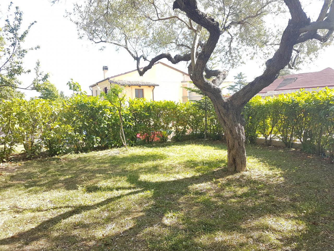 Pescara - Appartamento bilocale arredato con corte e giardino privato