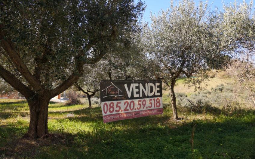 Pescara – San Silvestro – Terreno edificabile di mq 2410.